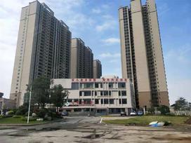 碧桂园华润新城之光花园实景图