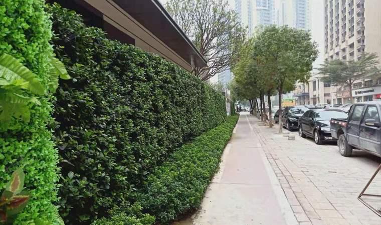 景商领峰花园小区周边实景图1