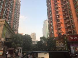 帝涛豪园实景图
