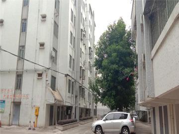桂华教师村