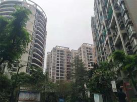 南国雅苑实景图