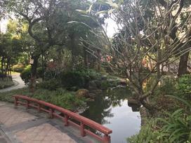 御龙湾实景图