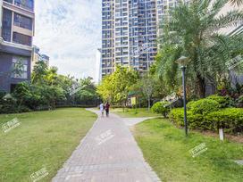 TCL康城四季花园实景图