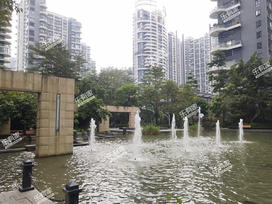 中信红树湾四期实景图