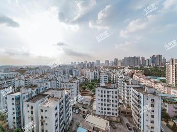 红荔侨苑三期