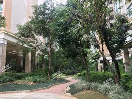 新天美地花园实景图