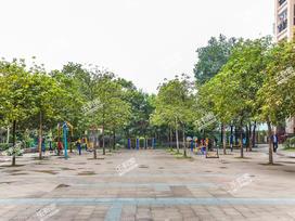 江门奥园实景图