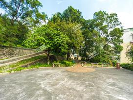 翠湖居实景图