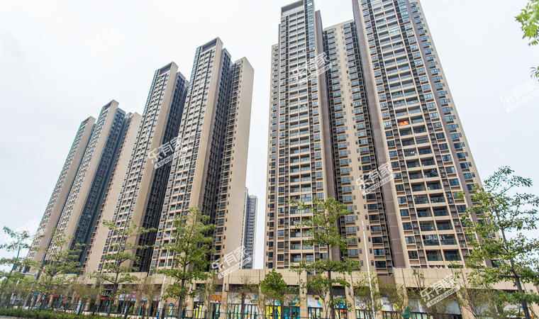 时代香海彼岸小区实景图4