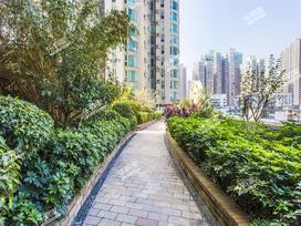东方之珠花园实景图