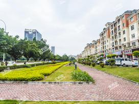 南沙碧桂园实景图