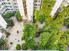 丽江花园丽字楼实景图