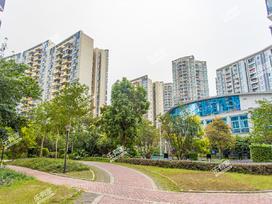 新世界花园嘉乐苑实景图