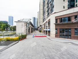 金地龙城中央实景图