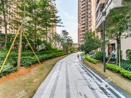 中骏蓝湾翠岭花园一期实景图